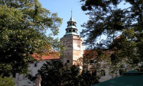 Zdjęcie POLSKA / opolskie / Niemodlin / Wieża zamkowa