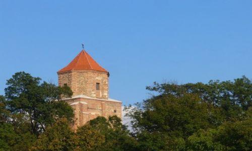 Zdjęcie POLSKA / śląskie / Toszek / Wieża zamku w Toszku
