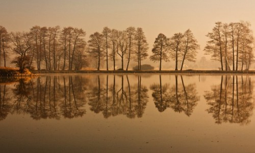 Zdjęcie POLSKA / Ślaskie / Ligota / na cienkiej ziemi