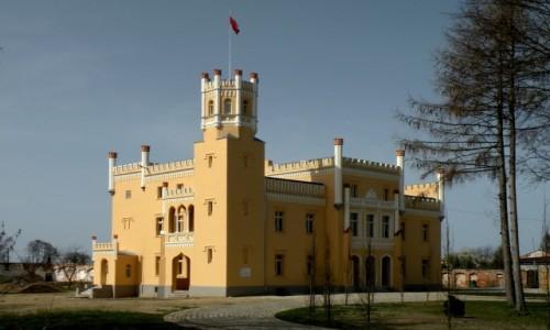 Zdjęcie POLSKA / opolskie / Narok / Pałac w Naroku