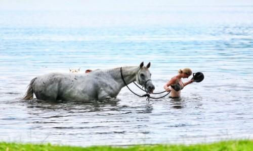 Zdjęcie POLSKA / - / Kaszuby / Koń w wodzie i dżokej