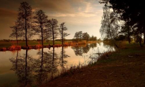 Zdjęcie POLSKA / pow-żniński / Dolina Noteci / Złota godzina w Dolinie Noteci