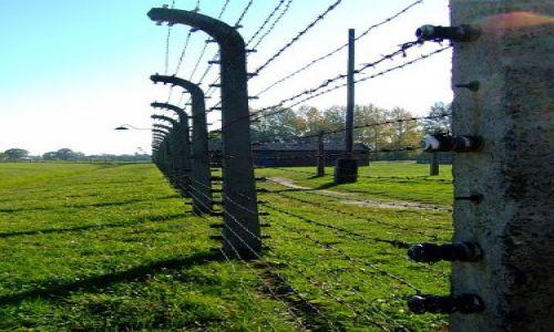 Zdjecie POLSKA / brak / Oswiecim-Birkenau / granica życia i śmierci