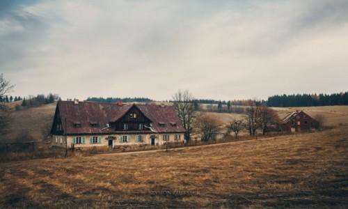 Zdjęcie POLSKA / Góry Kamienne / - / Okolice Andrzejówki