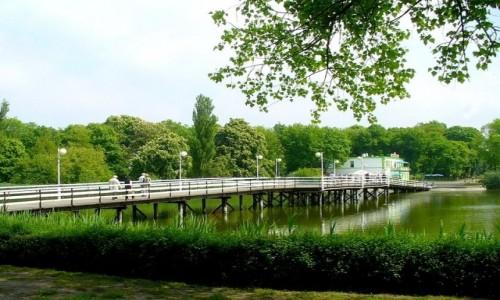 Zdjecie POLSKA / kujawsko pomorskie / Inowrocław / Mostek w parku