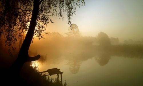 Zdjęcie POLSKA / pow-żniński / Dolina Noteci / Majowe mgły