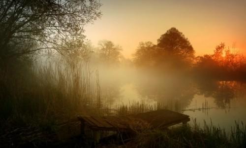 Zdjęcie POLSKA / pow-żniński / Nadnoteckie łęgi / W nocy burze,rano mgły i słońce