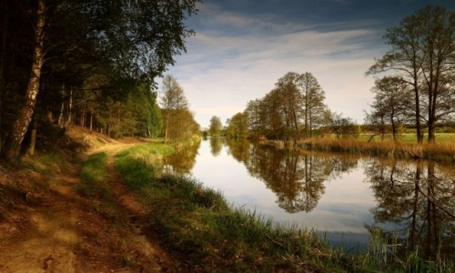 Zdjęcie POLSKA / pow-żniński / Nadnoteckie łęgi / Wzdłuż rzeki Noteć