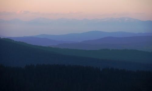Zdjecie POLSKA / Beskid Żywiecki / Rysianka / Wschodzące słońce maluje... w ciszy