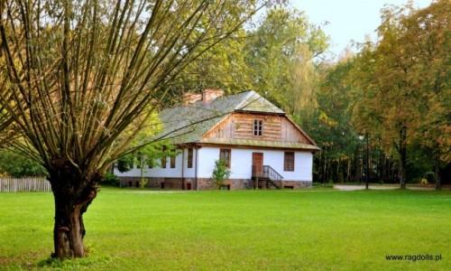 Zdjęcie POLSKA / Ciechanowiec / Muzeum wsi Polskiej w Ciechanowcu / Chatka