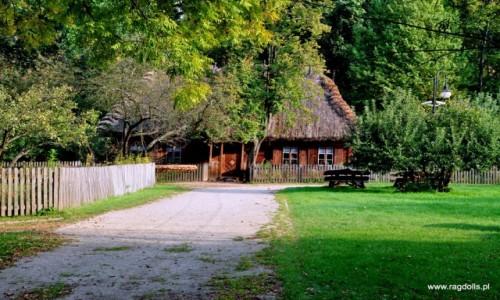 Zdjecie POLSKA / Ciechanowiec / Muzeum wsi Polskiej w Ciechanowcu / Wiejskie klimaty