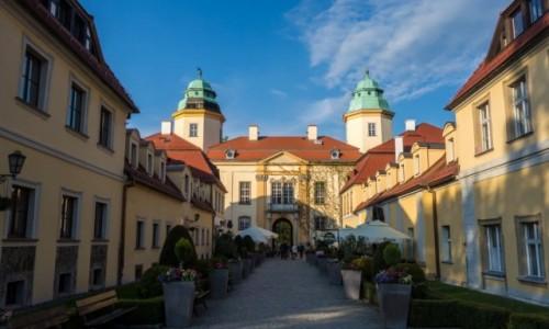 Zdjecie POLSKA / Dolnośląskie / Zamek Książ / Droga prowadząca do zamku