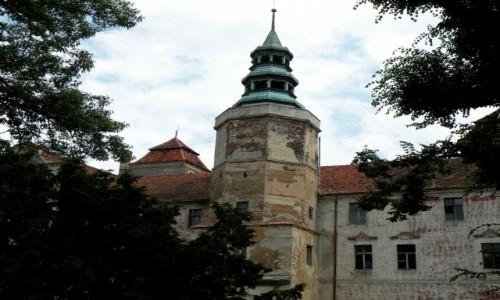 Zdjęcie POLSKA / opolskie / Niemodlin / Wieża zamku