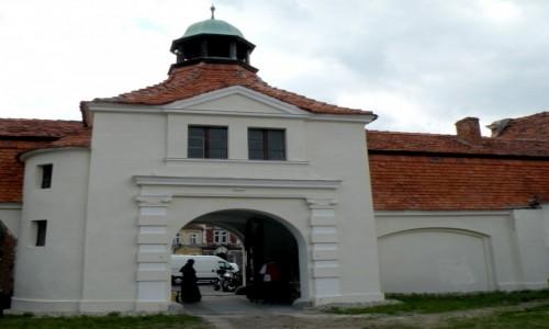 Zdjęcie POLSKA / opolskie / Niemodlin / Główna brama wejściowa zamku.