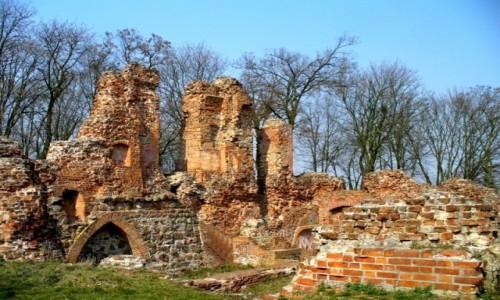 Zdjecie POLSKA / kujawsko pomorskie / Raci��ek / Malownicze ruin