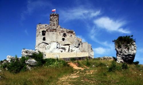 POLSKA / Jura Krakowsko-Cz�stochowska / Mir�w / Ruiny zamku