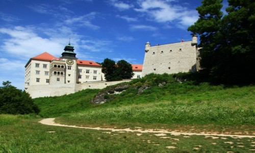 POLSKA / Jura Krakowsko-Cz�stochowska / Pieskowa Ska�a / Scie�ka wok� zamku