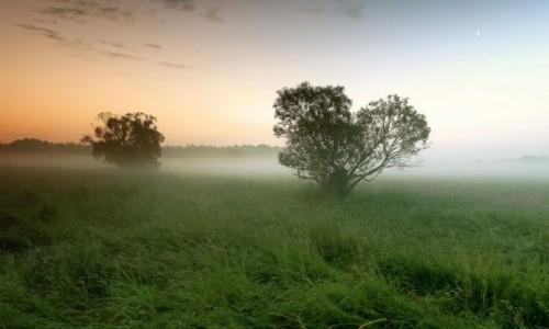 Zdjęcie POLSKA / pow-żniński / Dolina Noteci / Burze nocą,rano słońce i mgły!