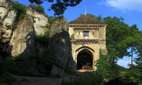 POLSKA / Jura Krakowsko-Cz�stochowska / Ojc�w / Droga na zamek