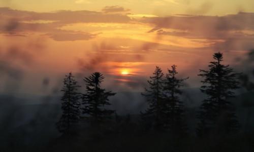 Zdjęcie POLSKA / Beskid Żywiecki / Krawców Wierch / Wieczór namalowany słońcem