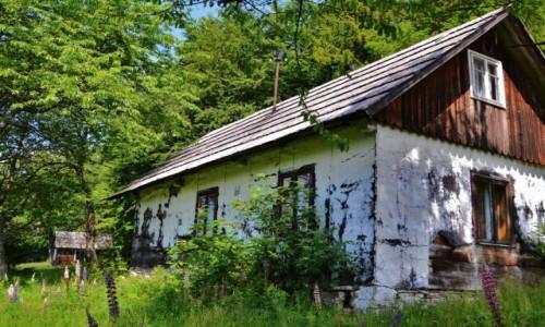 Zdjęcie POLSKA / Beskid Żywiecki / Przegibek / Łubinowa chata