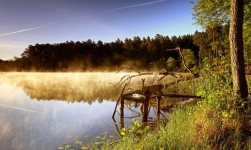 Zdjęcie POLSKA / Bory Tucholskie / Trzebciny / Z przyrodą w zgodzie żyj!