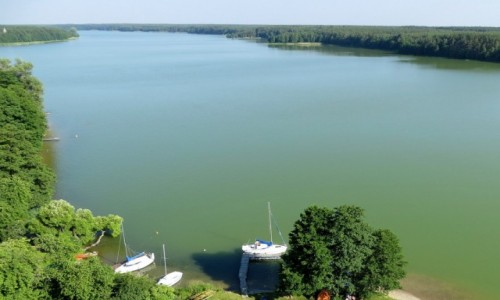 Zdjęcie POLSKA / Kaszuby / Wdzydze Kiszewskie / Wielka Woda, czyli kaszubskie morze