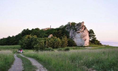 Zdjęcie POLSKA / Małopolska / Jerzmanowice / Jerzmanowice