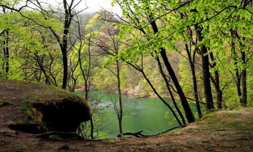 POLSKA / Zachodniopomorskie / Puszcza Bukowa- Jezioro Szmaragdowe / z wysokiego brzegu...