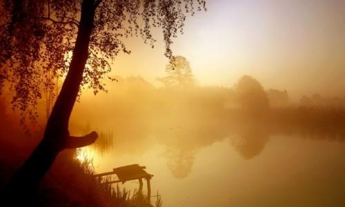 POLSKA / pow-�ni�ski / Dolina Noteci / B��dzi� we mgle