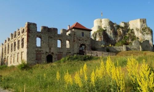 Zdjęcie POLSKA / Małopolska / Jura Krakowsko-Częstochowska / Zamek w Rabsztynie