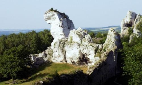 Zdjęcie POLSKA / Śląskie / Ogrodzieniec / Smok zaklęty w kamieniu