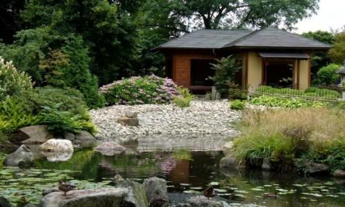 Zdjęcie POLSKA / dolnośląskie / Wrocław / Domek w ogrodzie japońskim.