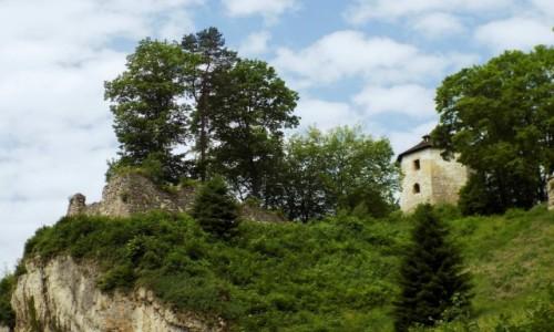 Zdjęcie POLSKA / Małopolska / Ojców / Ruiny zamku