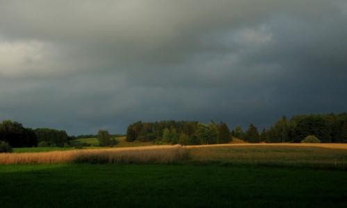 Zdjęcie POLSKA / Suwalszczyzna / Postawelek / trochę słońca