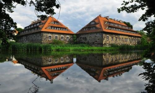 Zdjęcie POLSKA / Dolny Śląsk / Radomierzyce / Pałac