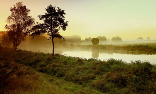 POLSKA / pow-�ni�ski / Dolina Noteci / B��dzi� we mgle!