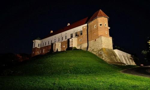 Zdjecie POLSKA / woj. �wi�tokrzyskie / Sandomierz / Zamek