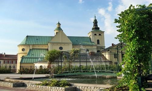 Zdjecie POLSKA / Podkarpacie / Rzeszów / Ogrody bernardyńskie