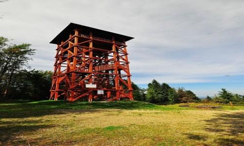 Zdjęcie POLSKA / Beskid Sądecki / Eliaszówka, wieża widokowa / Wieża