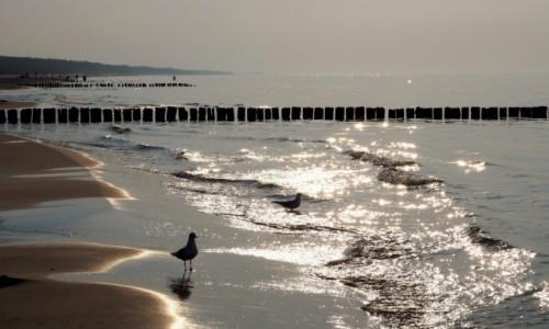 Zdjecie POLSKA / Zachodniopomorskie / Mrzeżyno / połowa września, a lato trwa...