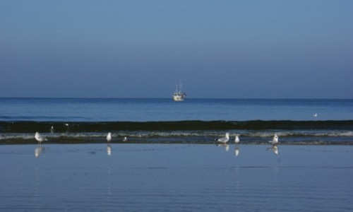 Zdjęcie POLSKA / Pomorze / Łeba / Łeba morze