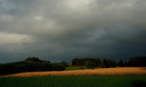 Zdjęcie POLSKA / Suwalszczyzna / Postawelek / Przed burzą