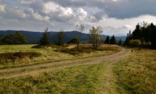 POLSKA / Beskid Ma�y / okolice Potr�jnej / Pasmo Madahory