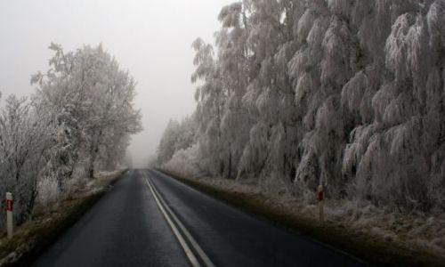 Zdjecie POLSKA / brak / gdzieś w okolicach Jastrowia.. / droga