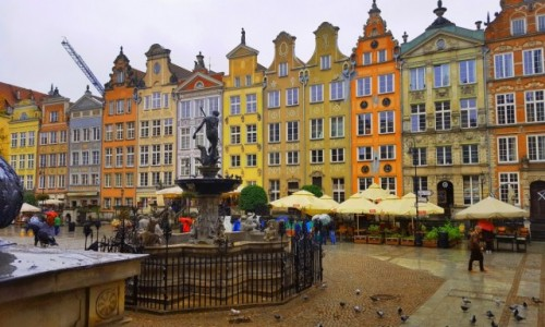 Zdjecie POLSKA / Pomorskie / Gdańsk / Kolorowy Gdańsk