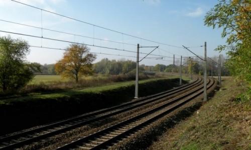 POLSKA / opolskie / Opole / Tory do Gliwic, dla Pendolino, w jesiennym s�o�cu