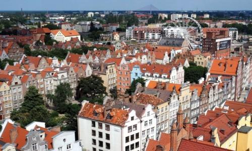 Zdjecie POLSKA / Pomorze / Gdańsk / z góry - jeszcze ładniej:)
