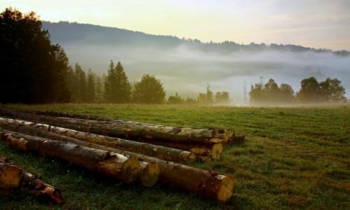 Zdjecie POLSKA / Beskid �l�ski / Wis�a / Okolica w chmur