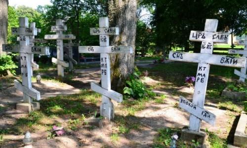 Zdjecie POLSKA / Mazury / Wojnowo / Cmentarz staroobrzędowców